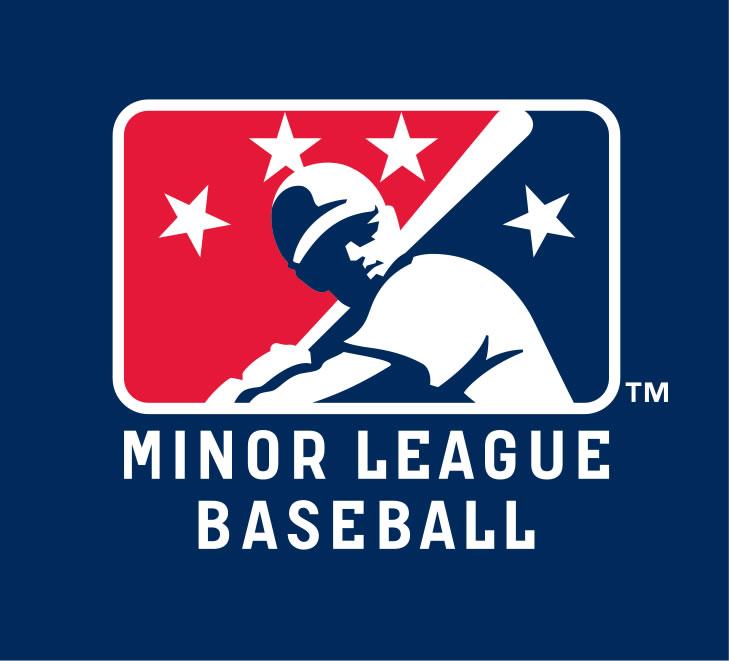 https://static.tvtropes.org/pmwiki/pub/images/minor_league_baseball.jpg