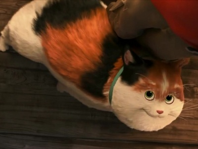 Mochi The Cat From Big Hero