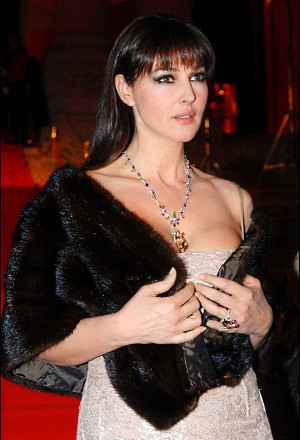 https://static.tvtropes.org/pmwiki/pub/images/monica_bellucci_at_cartier_opening.jpg