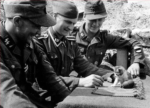 http://static.tvtropes.org/pmwiki/pub/images/nazis_with_kittens_5152.jpg