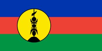 https://static.tvtropes.org/pmwiki/pub/images/new_caledonia_flag.png