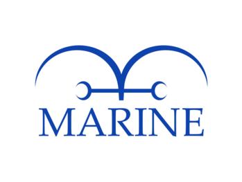 https://static.tvtropes.org/pmwiki/pub/images/op_marines_logo.png