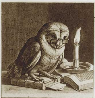 The Owl Knowing One Tv Tropes