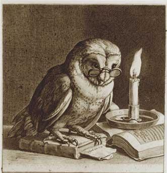 owl symbol of wisdom