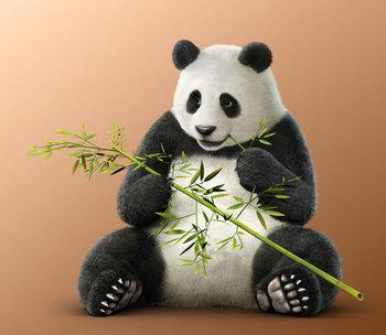 https://static.tvtropes.org/pmwiki/pub/images/panda_t71.jpg