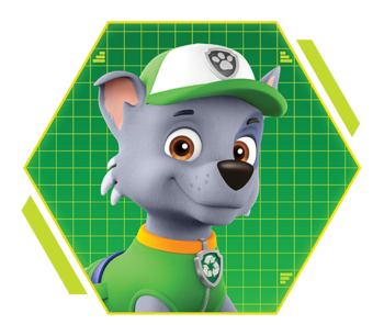 https://static.tvtropes.org/pmwiki/pub/images/paw_patrol_rocky.png