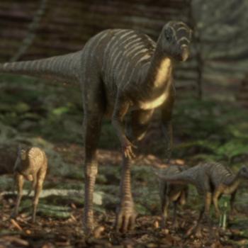 https://static.tvtropes.org/pmwiki/pub/images/pdjeholosaurus.png