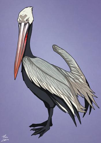 https://static.tvtropes.org/pmwiki/pub/images/pelican_stalker.jpg