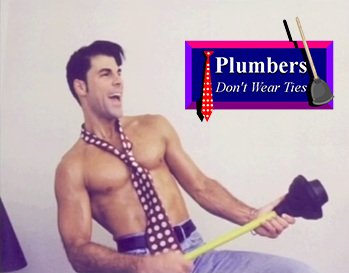 https://static.tvtropes.org/pmwiki/pub/images/plumbersdontwearties.png