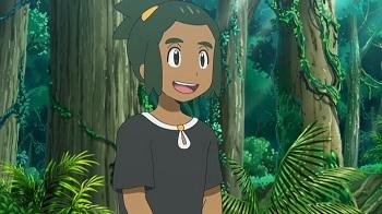https://static.tvtropes.org/pmwiki/pub/images/pokemonhau_6.jpg