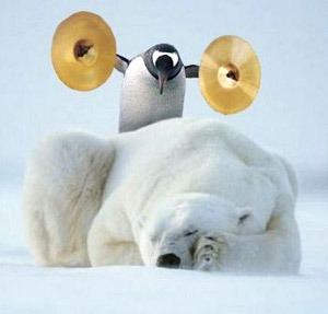 http://static.tvtropes.org/pmwiki/pub/images/polar_bears_and_penguins.jpg