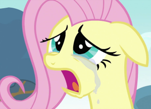 my little pony friendship is magic woobie tv tropes