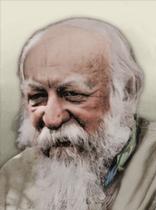 https://static.tvtropes.org/pmwiki/pub/images/portrait_oyrotia_ivan_zavoloko.png