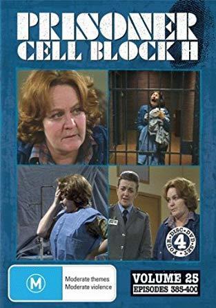 https://static.tvtropes.org/pmwiki/pub/images/prisoner_cell_block_h.jpg