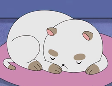 https://static.tvtropes.org/pmwiki/pub/images/puppycat_4502.png
