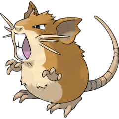 https://static.tvtropes.org/pmwiki/pub/images/raticate020.png