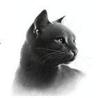 http://static.tvtropes.org/pmwiki/pub/images/reedwhisker_6521.JPG