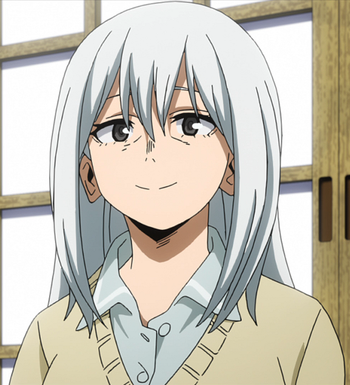 https://static.tvtropes.org/pmwiki/pub/images/rei_todoroki_anime_season_4.png