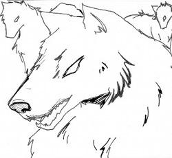 https://static.tvtropes.org/pmwiki/pub/images/roommates-wolves_4998.jpg