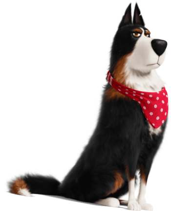 The Secret Life Of Pets Characters Tv Tropes