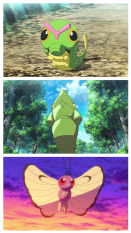 https://static.tvtropes.org/pmwiki/pub/images/rsz_1rsz_butterfree.png