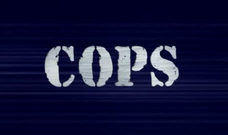 http://static.tvtropes.org/pmwiki/pub/images/rsz_cops_intertitle_2568.png
