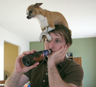 http://static.tvtropes.org/pmwiki/pub/images/rsz_dog_hat_416.jpg