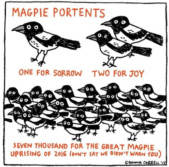 Magpies As Portents
