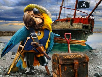 Image result for Pirates parrot
