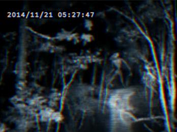 https://static.tvtropes.org/pmwiki/pub/images/rsz_screenshot_1_9.png