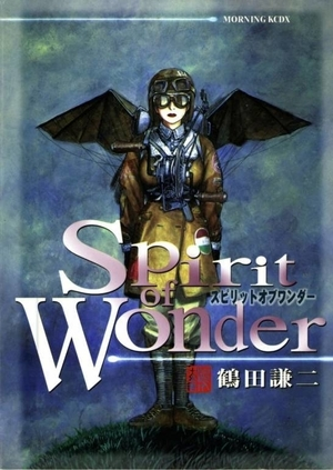 https://static.tvtropes.org/pmwiki/pub/images/rsz_spirit_of_wonder.jpg