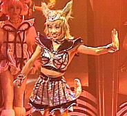 https://static.tvtropes.org/pmwiki/pub/images/sailor_pewter_fox.png