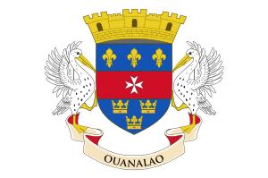 https://static.tvtropes.org/pmwiki/pub/images/saint_barthelemy_flag.png
