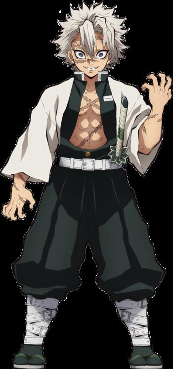 https://static.tvtropes.org/pmwiki/pub/images/sanemi_shinazugawa_anime.png