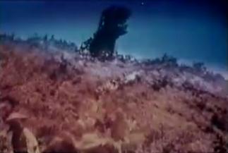 Cozzilla Film Tv Tropes