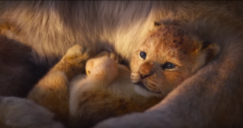 The Lion King 2019 Characters Tv Tropes