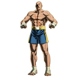 street fighter v characters tv tropes autos post