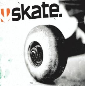 http://static.tvtropes.org/pmwiki/pub/images/skate-001_3176.png