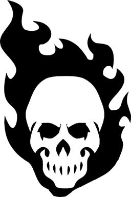 https://static.tvtropes.org/pmwiki/pub/images/skullhtv.png