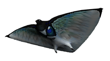 https://static.tvtropes.org/pmwiki/pub/images/skyray_fauna.png
