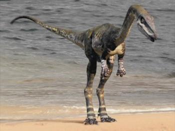 https://static.tvtropes.org/pmwiki/pub/images/sm_coelurosaur.jpg