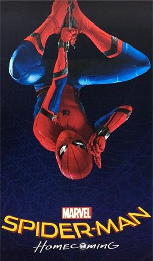Résultats de recherche d'images pour «spider man homecoming»