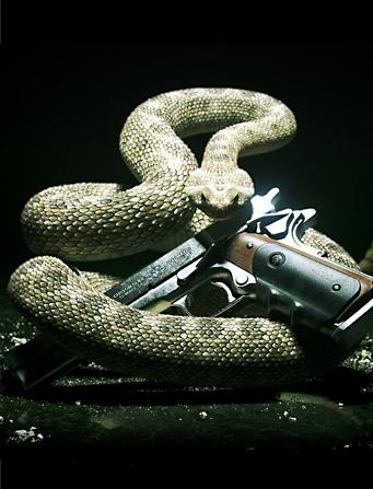 http://static.tvtropes.org/pmwiki/pub/images/snakeballer.jpg