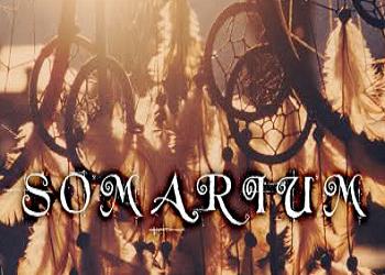 https://static.tvtropes.org/pmwiki/pub/images/somarium.png