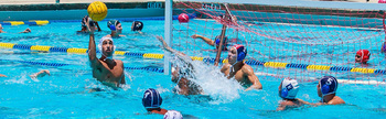http://static.tvtropes.org/pmwiki/pub/images/south_florida_water_polo_club.jpg