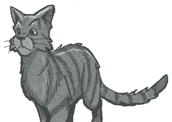 Warrior Cats SkyClan / Characters - TV Tropes