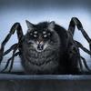 https://static.tvtropes.org/pmwiki/pub/images/spidercat.jpg