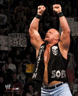 Stone Cold Steve Austin Wrestling