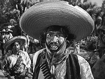 http://static.tvtropes.org/pmwiki/pub/images/stinkin_badges_bandito_1770.jpg