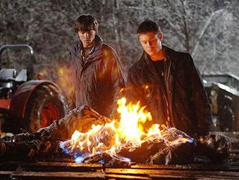 http://static.tvtropes.org/pmwiki/pub/images/supernatural_burning_bones.jpg